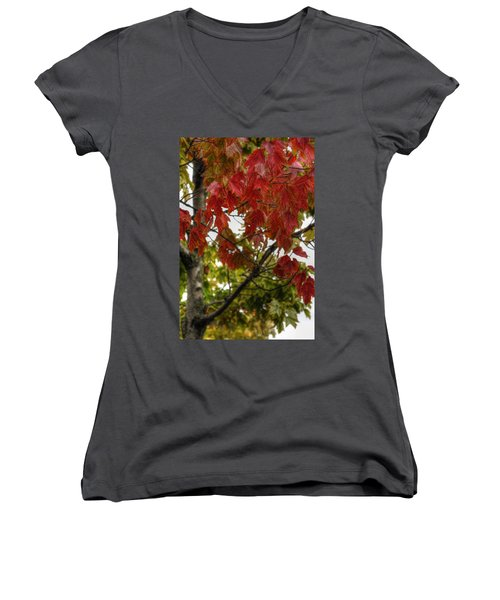 Women's V-Neck T-Shirt (Junior Cut) featuring the photograph Red And Green Prior X-mas by Michael Frank Jr
