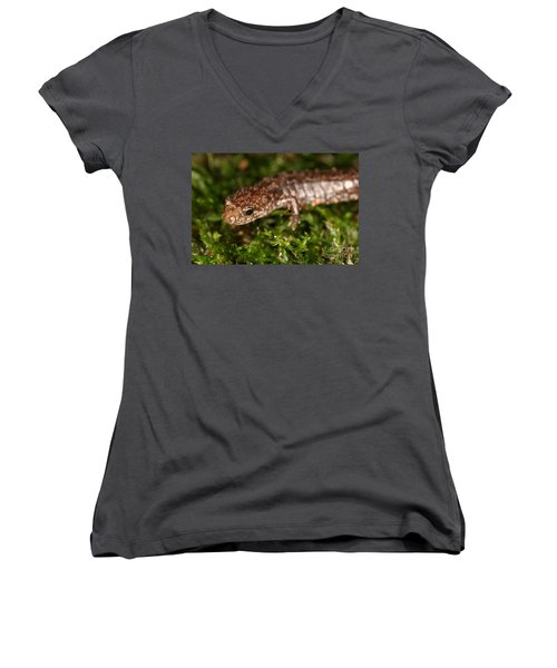 Red-backed Salamander Women's V-Neck T-Shirt (Junior Cut) by Ted Kinsman