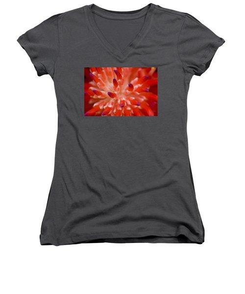 Red Bromeliad Women's V-Neck T-Shirt