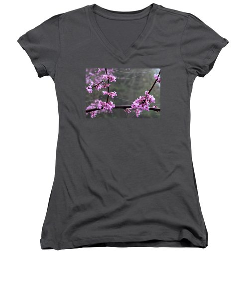 Redbud With Webs And Dew Women's V-Neck
