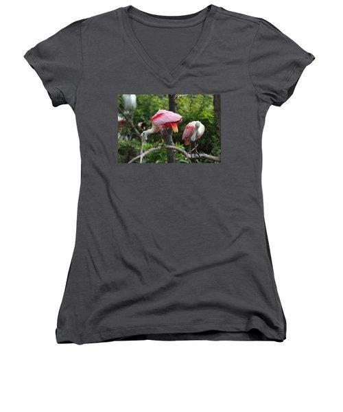 Roseate Spoonbills Women's V-Neck