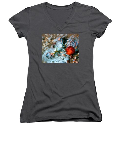 Scallop And Seaweed 11c Women's V-Neck T-Shirt (Junior Cut) by Gerry Gantt