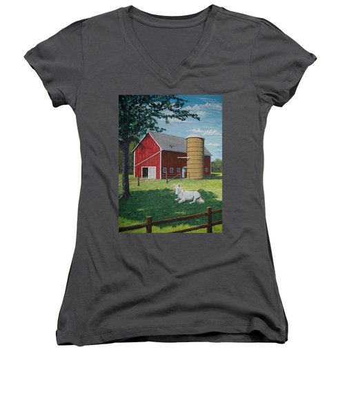 Shady Rest Women's V-Neck T-Shirt (Junior Cut) by Norm Starks