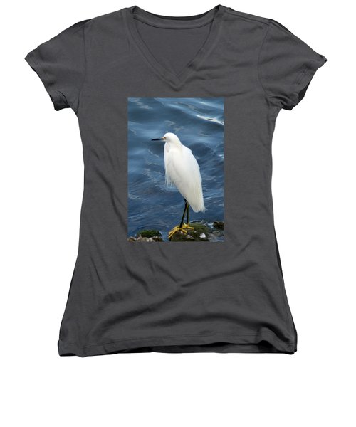 Snowy Egret 1 Women's V-Neck T-Shirt
