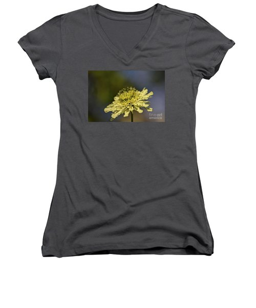 Women's V-Neck T-Shirt (Junior Cut) featuring the photograph Soft Yellow. by Clare Bambers