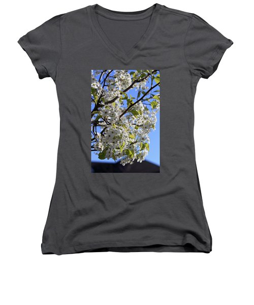 Women's V-Neck T-Shirt (Junior Cut) featuring the photograph Spring Blooms by Kay Novy