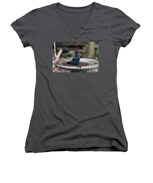 Women's V-Neck T-Shirt (Junior Cut) featuring the digital art Steller Jay In The Birdbath by Carol Ailles