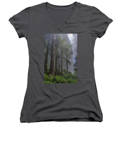 Sun Breaking On Redwoods Women's V-Neck (Athletic Fit)