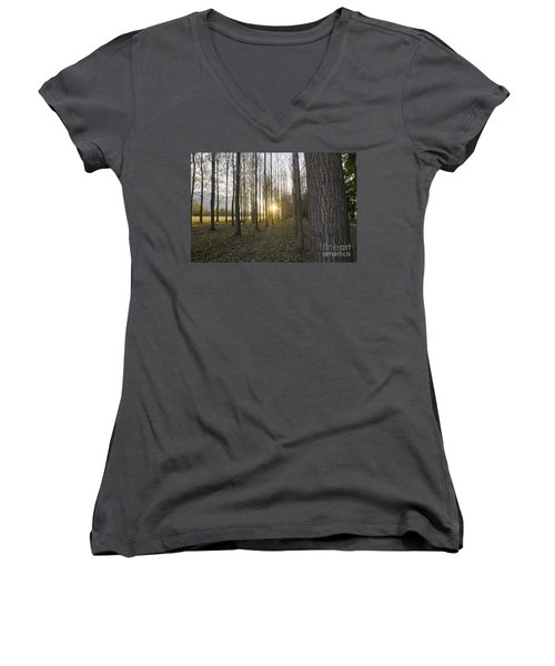 Sunlight In The Forest Women's V-Neck