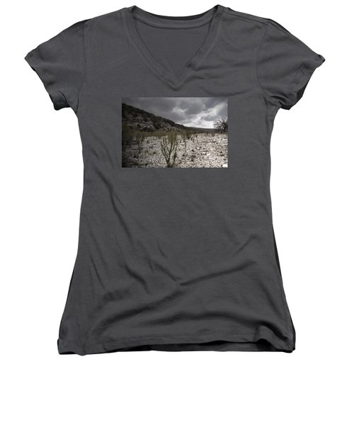 The Bank Of The Nueces River Women's V-Neck