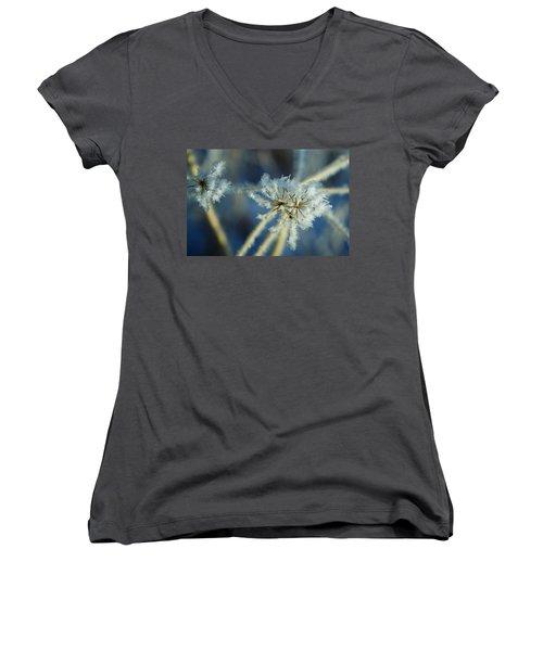 The Beauty Of Winter Women's V-Neck T-Shirt
