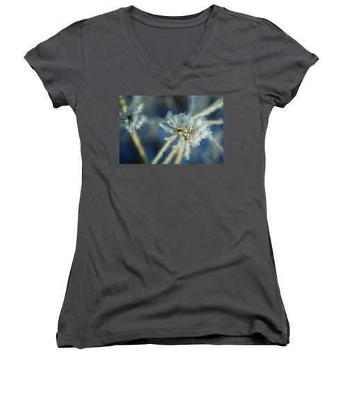 The Beauty Of Winter Women's V-Neck T-Shirt (Junior Cut) by Ellen Heaverlo