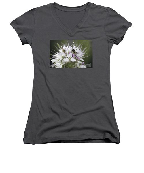 The Beetle And The Bee Women's V-Neck T-Shirt
