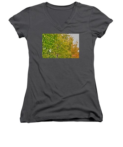 Women's V-Neck T-Shirt (Junior Cut) featuring the photograph Transition Of Autumn Color by Michael Frank Jr