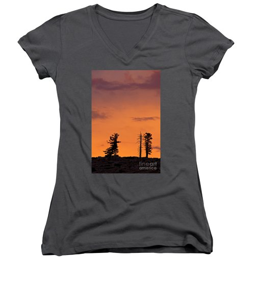 Trees At Sunset Women's V-Neck (Athletic Fit)