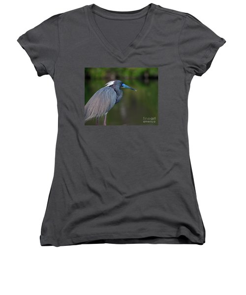Tricolored Heron Women's V-Neck