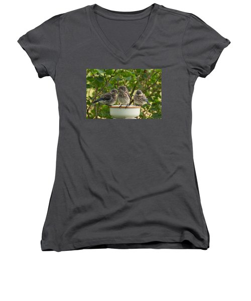 Trouble Times Three Women's V-Neck T-Shirt (Junior Cut) by Bill Pevlor