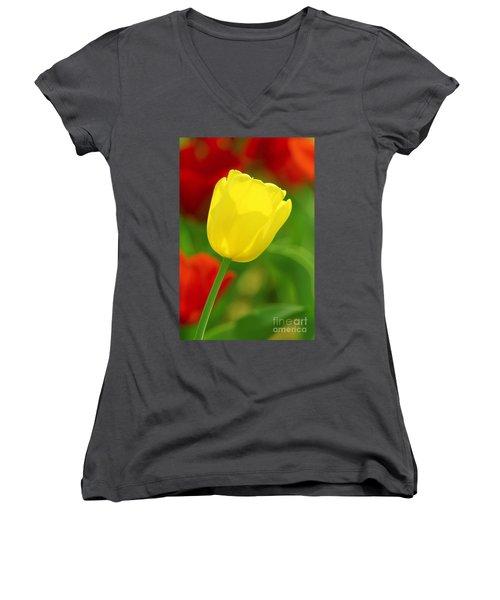 Tulipan Amarillo Women's V-Neck