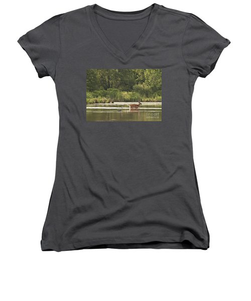 Women's V-Neck T-Shirt (Junior Cut) featuring the photograph Unusual Pair  by Jeannette Hunt