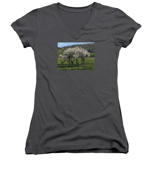 Valley Plum Thicket Women's V-Neck T-Shirt (Junior Cut) by Bruce Morrison
