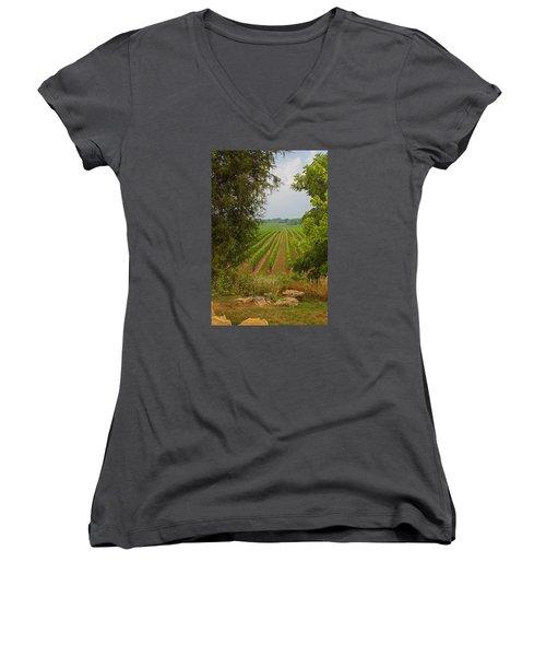 Vineyard On The Bench Women's V-Neck T-Shirt (Junior Cut) by John Stuart Webbstock