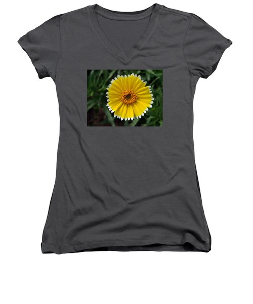 Women's V-Neck T-Shirt (Junior Cut) featuring the photograph Wake Up by Joe Schofield