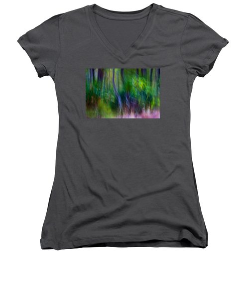 Whispers On The Wind Women's V-Neck (Athletic Fit)