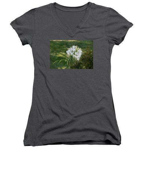 White Cleome Women's V-Neck T-Shirt (Junior Cut) by Michael Bessler