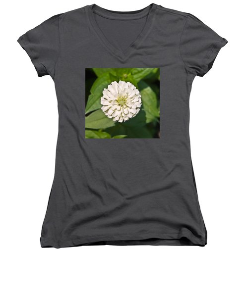 Women's V-Neck T-Shirt (Junior Cut) featuring the photograph White Zinnia And Green Leaves by Susan Leggett