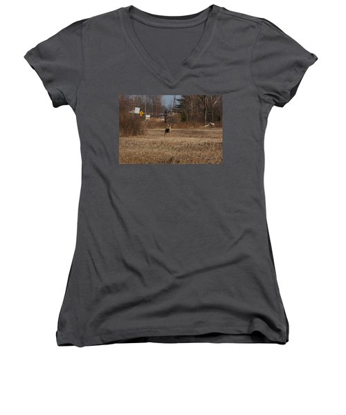 Whitetail Deer Women's V-Neck T-Shirt