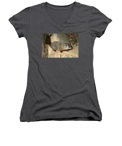 Woodchuck Women's V-Neck T-Shirt (Junior Cut)