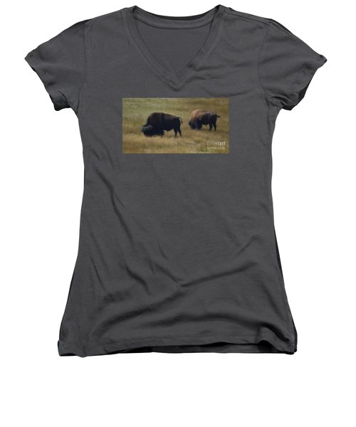 Wyoming Buffalo Women's V-Neck T-Shirt