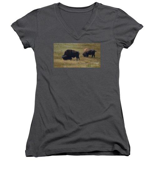 Wyoming Buffalo Women's V-Neck (Athletic Fit)