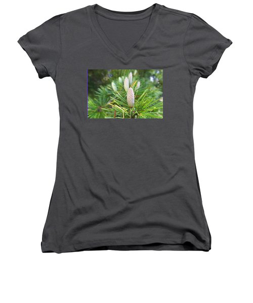 Young Pine Cones Women's V-Neck T-Shirt (Junior Cut) by Anne Mott
