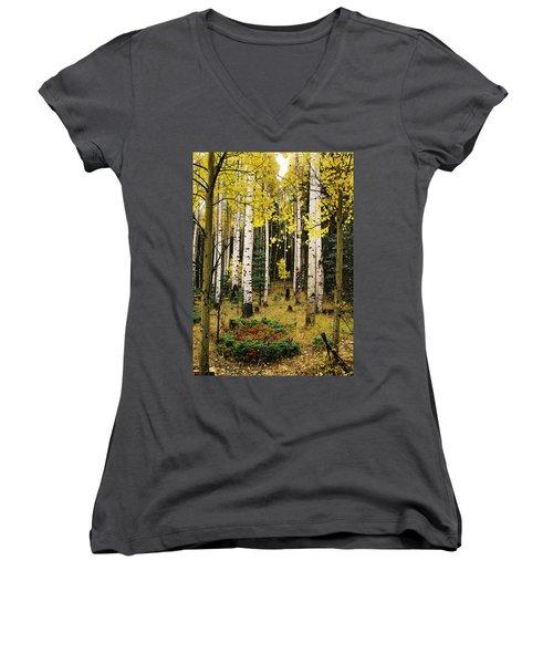 Aspen Grove In Upper Red River Valley Women's V-Neck T-Shirt