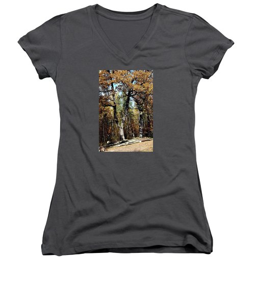 Autumn In Forest Women's V-Neck T-Shirt (Junior Cut) by Henryk Gorecki