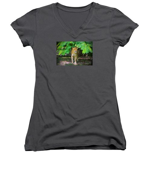 Women's V-Neck T-Shirt (Junior Cut) featuring the painting  Emerging From The Shadows by Judy Kay