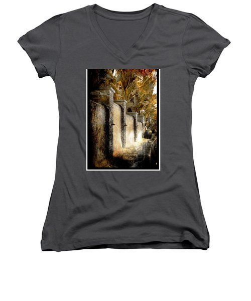Flowing Waterfall  Women's V-Neck T-Shirt (Junior Cut) by Athala Carole Bruckner