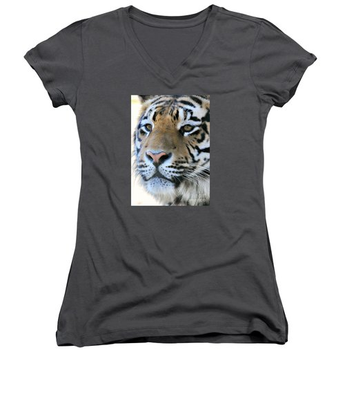 Tiger Portrait  Women's V-Neck T-Shirt (Junior Cut) by Mindy Bench