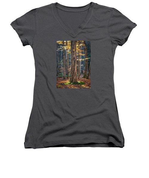 #0187 - Dummerston, Vermont Women's V-Neck T-Shirt