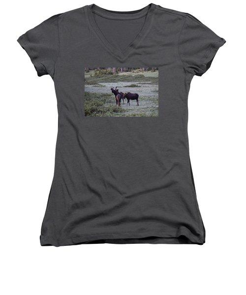 Moose Cameron Pass Co Women's V-Neck