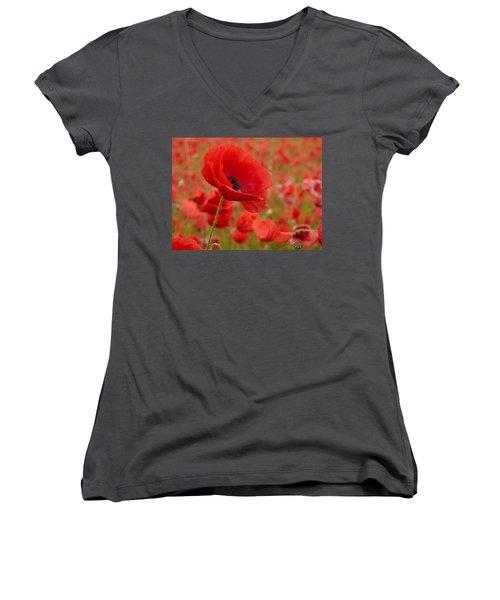 Red Poppies 3 Women's V-Neck T-Shirt (Junior Cut) by Jouko Lehto