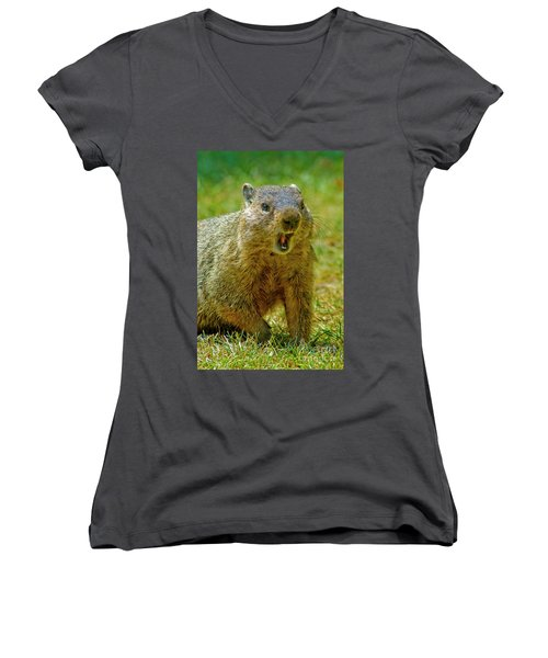 A Hungry Fellow  Women's V-Neck T-Shirt (Junior Cut) by Paul W Faust - Impressions of Light