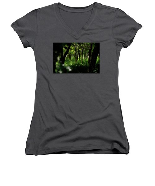 A Walk In The Woods Women's V-Neck