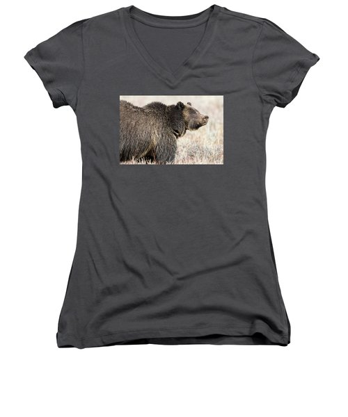 All Seems Beautiful Women's V-Neck T-Shirt (Junior Cut) by Scott Warner