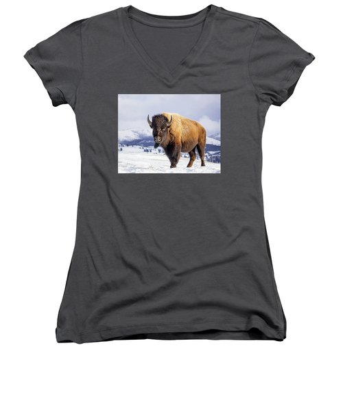 American Legend Women's V-Neck T-Shirt