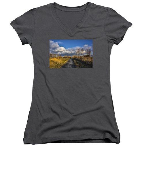 Autumn Evening Women's V-Neck T-Shirt (Junior Cut) by Vladimir Kholostykh