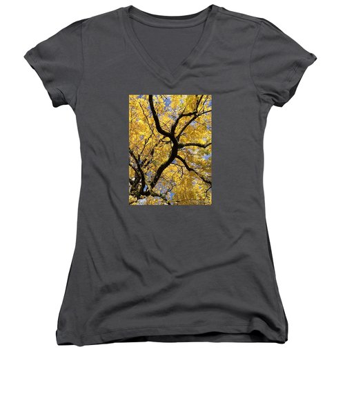 Autumn Gold Women's V-Neck (Athletic Fit)