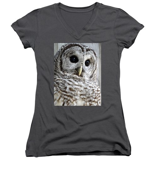 Barred Owl Women's V-Neck T-Shirt (Junior Cut) by Rebecca Overton