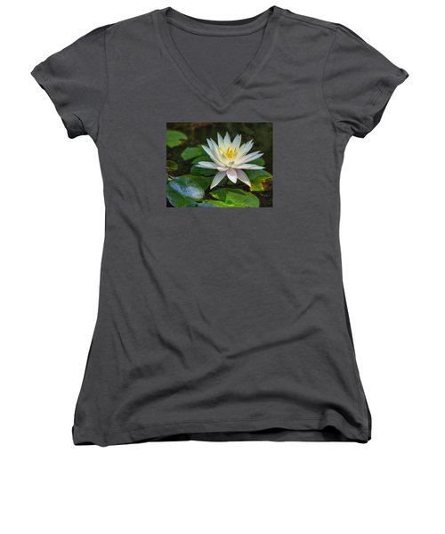 Beautiful Lotus Women's V-Neck T-Shirt (Junior Cut) by Susi Stroud
